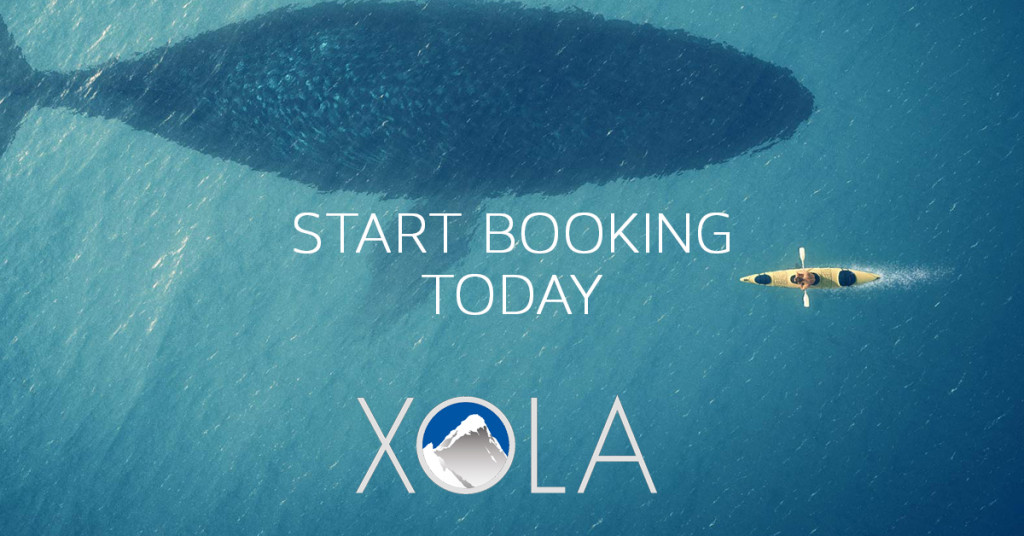 start-booking-today